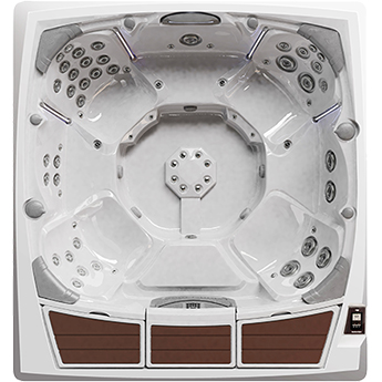 Sundance Spas 980 Series