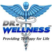 Dr Wellness Spas logo